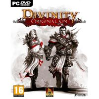 Divinity: Original Sin - PC - Steam