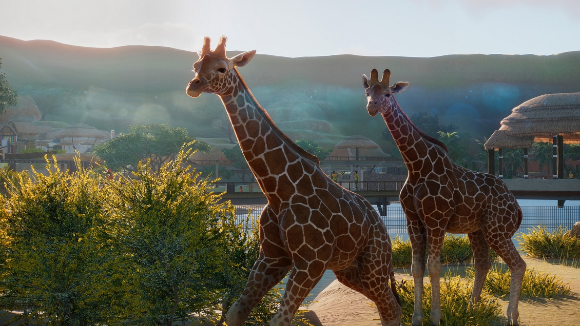 planet-zoo-pc-steam-simulator-hra-na-pc